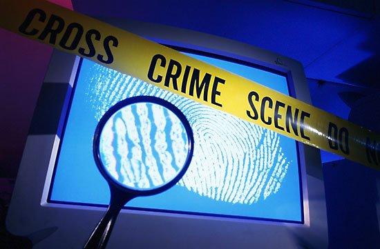 Il reato di frode informatica. Distinzione con le altre figure più comuni di reato informatico