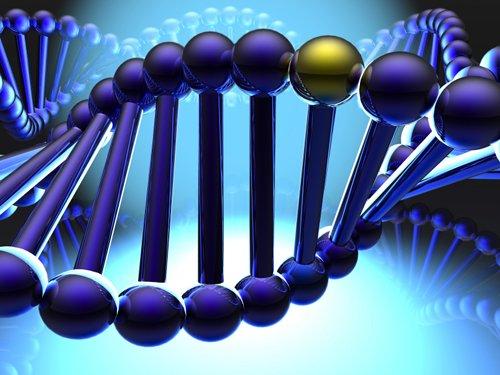 Nasce la Banca dati del DNA