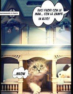 Cani e gatti nei condomini