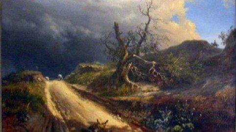 """Se cade un albero """"privato"""" sulla strada: di chi è la responsabilità del danno"""