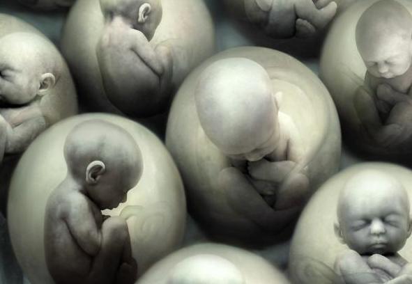 Aborto ancora salvo: La Corte Costituzionale rigetta il ricorso