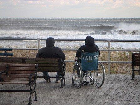 Vitalizio alimentare: invalidità, malattia, anzianità: assistenza a vita