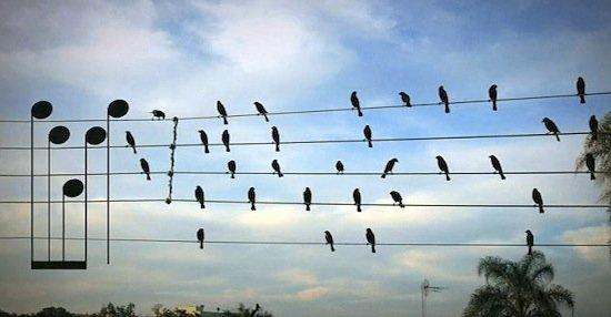"""Il """"plagio musicale"""": fino a quante note si può copiare un brano?"""
