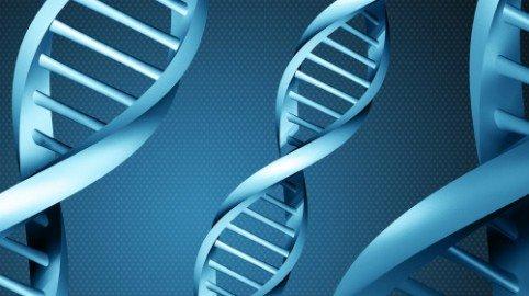 Test del DNA: il rifiuto immotivato può far scattare la paternità