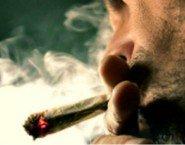 Droga e stupefacenti- incostituzionale la legge Fini-Giovanardi Lo decidera la Corte