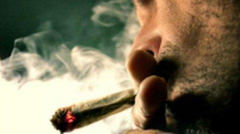 Il reato di coltivazione delle piantine di marijuana