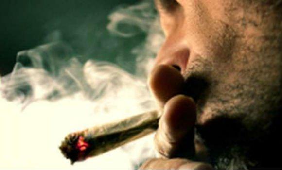 Cassazione: incostituzionale la Fini-Giovanardi sulle droghe leggere?