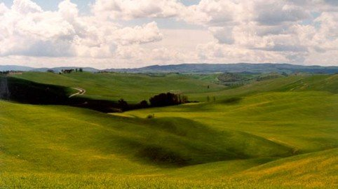 Terreni agricoli e aree fabbricabili: chi non paga Imu e Tasi
