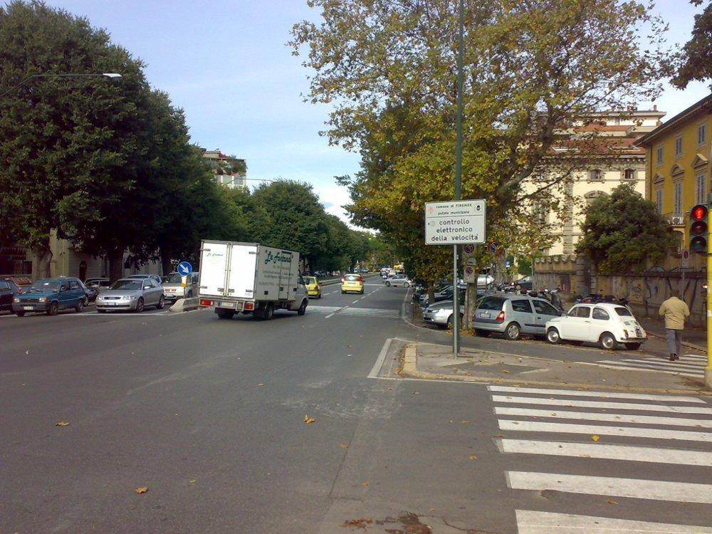Caduta di un albero in strada: chi paga il risarcimento?