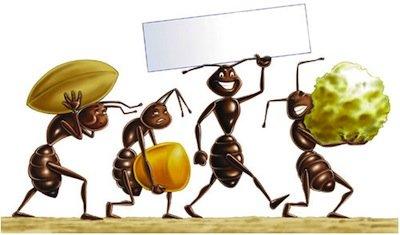 Combattere la crisi economica: non fate come le formiche