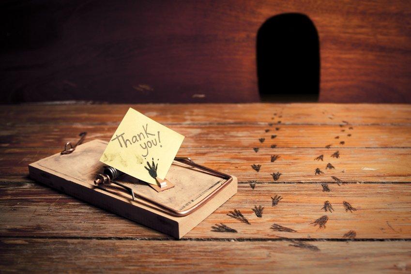Vietato andare in affitto per chi ha già casa: rischio esproprio dopo il Decreto del Fare