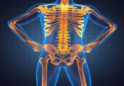 Diritti di chi soffre di scoliosi e la ginnastica posturale