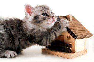 Ipoteca estinta? Il pignoramento continua e il creditore espropria la casa
