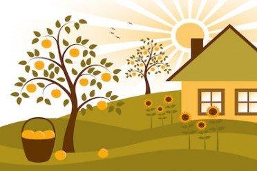 Locazione transitoria se falsa la durata dell affitto for Locazione commerciale transitoria
