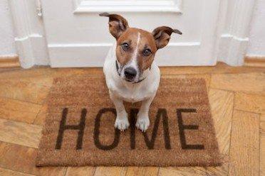 Detrazione interessi del mutuo solo per il proprietario di - Obblighi del proprietario di casa ...