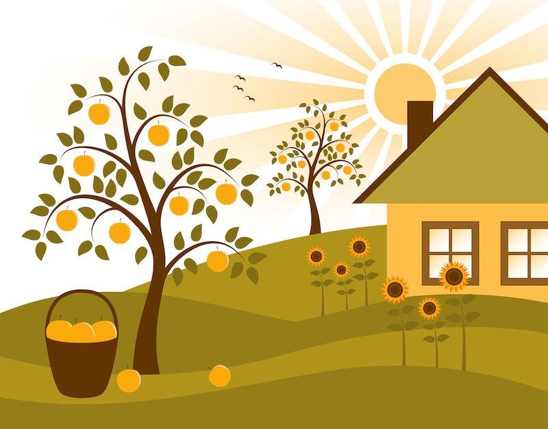 Giardino: come riconoscere il terreno