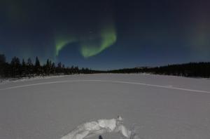 Telecamere di Google se in un museo o in luogo turistico aperto vieni ripreso - Finlandia aurora boreale
