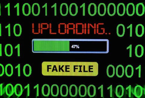 Scrivere notizie false su internet: quali sanzioni?