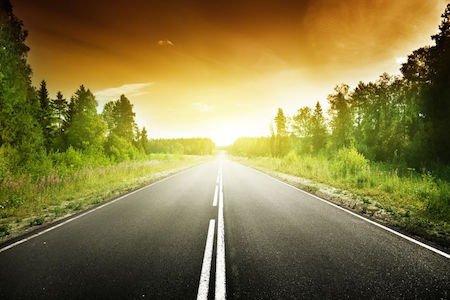 Autostrade: vietati alberi alti e barriere protettive