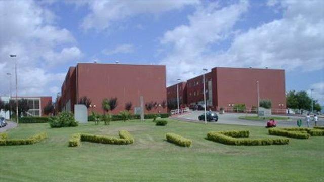 L'Università della Calabria e il falso diritto allo studio