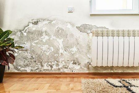 Infiltrazioni: a risarcire è l'inquilino o il padrone di casa?
