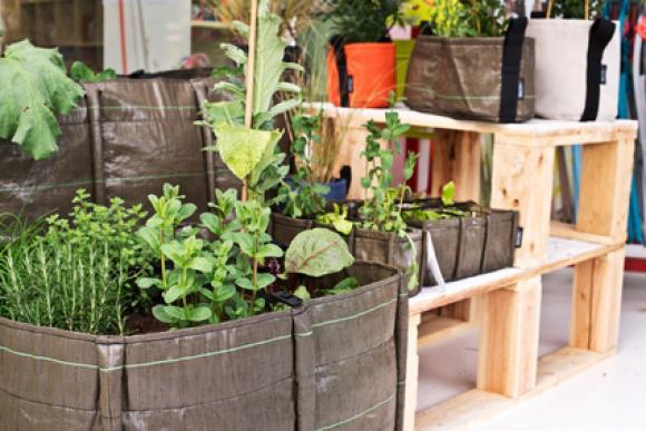 regole per coltivare in citt come fare l orto. Black Bedroom Furniture Sets. Home Design Ideas