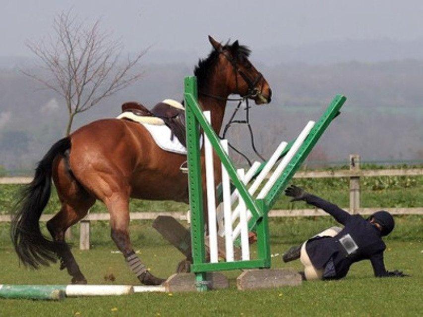 Caduta da cavallo: risponde il titolare del maneggio