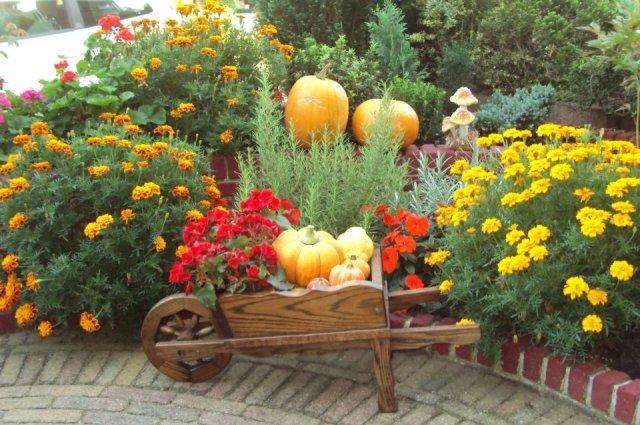 Come realizzare il giardino commestibile