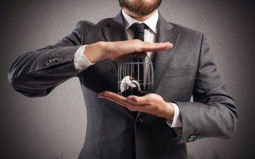 Verifica fiscale per la prestazione professionale gratuita o scontata?