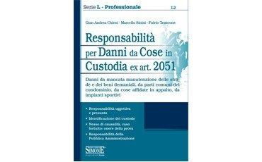 Responsabilità per Danni da Cose in Custodia ex art. 2051