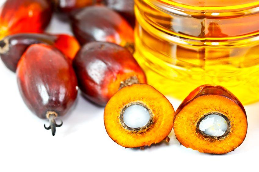 L'olio di palma fa male? La risposta dell'Istituto Superiore della Sanità