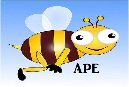 Pensione anticipata APE, la guida completa