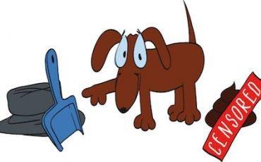 Escrementi di cane: accesso al parco con responsabilità del padrone