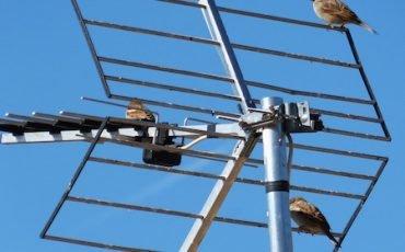 Antenna satellitare: chi disturba il segnale è condannato