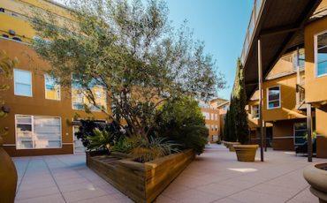 Giardino condominiale uso distanze spese manutenzione - Giardino condominiale ...