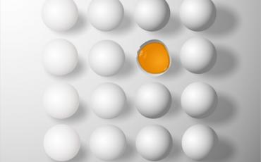 Uova: conservarle in frigo, si o no?