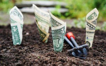 La revoca del fido bancario