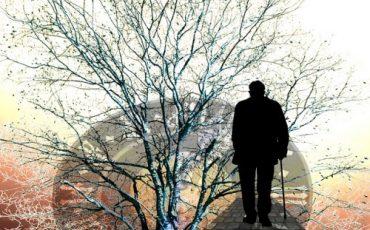 Reversibilità, come si divide la pensione