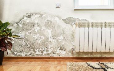 Chi mi paga se dal muro esterno viene umidità nell'appartamento?