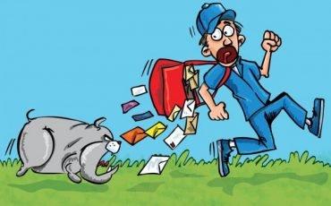 Se bussa il postino privato può essere un atto giudiziario