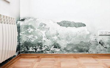 Infiltrazioni: se l'inquilino ripara l'appartamento a sue spese
