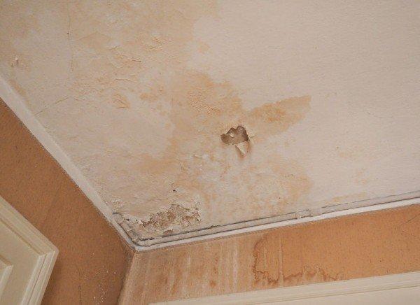 Infiltrazioni di acqua: responsabile l'affittuario o il locatore?
