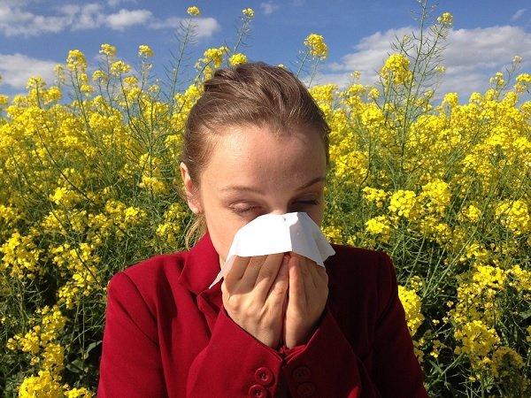 Allergia, posso assentarmi per malattia?