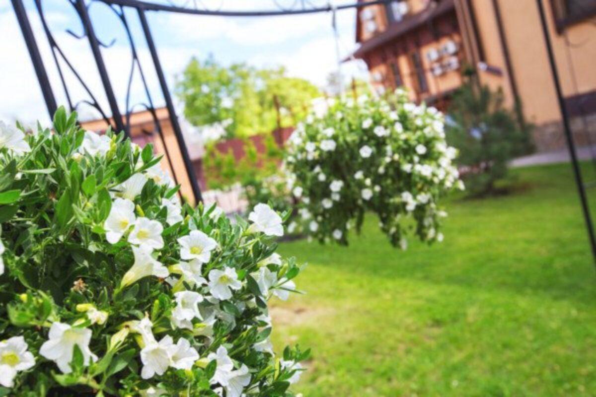 Come Recintare Un Giardino giardino privato: posso recintarlo?