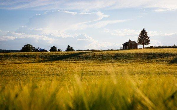 Accatastamento errato fabbricati rurali, arrivano gli avvisi del Fisco: come sanarlo