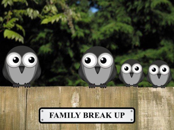 Divorzio, stop ai rapporti tra figli e nuovo partner