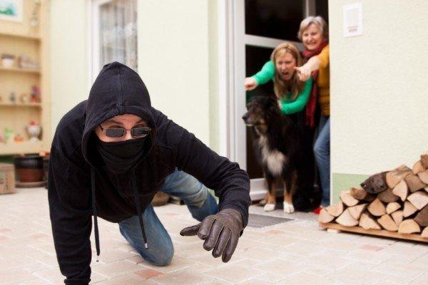 Suona l'allarme di casa, corro per strada e prendo una multa: che fare?