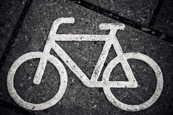 Se cado dalla bici per colpa di un cane chi mi risarcisce?