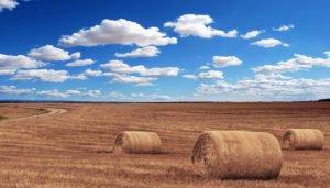È possibile l'usucapione su terreni del Comune o della Provincia?