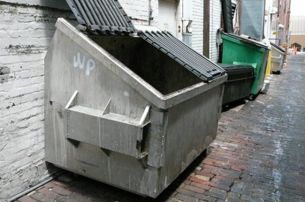 Box Per Bidoni Spazzatura cassonetti rifiuti troppo vicini: che fare